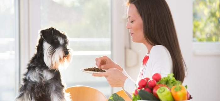 VLV-turn your hobby into a business-Woman taking care of a dog